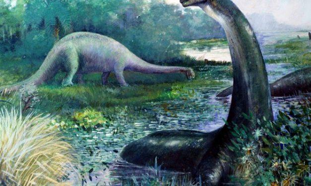 Hoe stierven dinosaurussen echt uit?