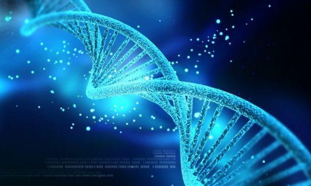 Genen controleren met gedachten