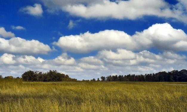 Wolken spotten (of sightseeing vanop je terras)
