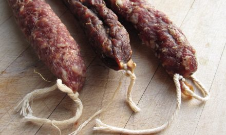 Healthier salami? Think Coagulase-negative staphylococci!