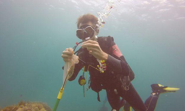 Hoe Nemo zijn lichaam aan de wetenschap doneert