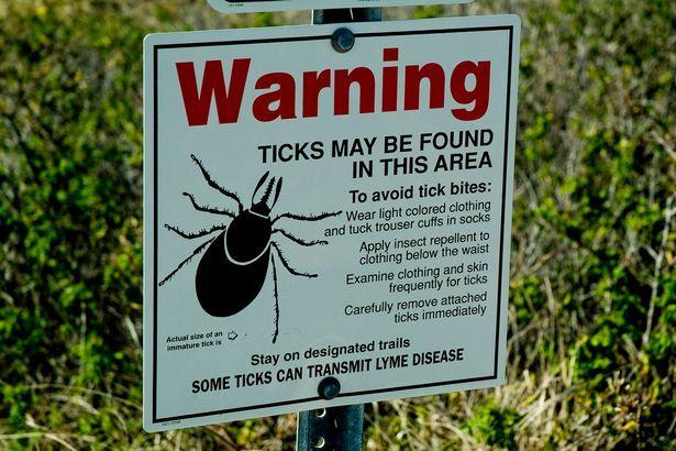 Waarschuwingsbord voor teken en Lyme in Groot-Brittannië