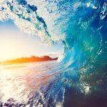 7 bizarre feitjes over onze oceanen