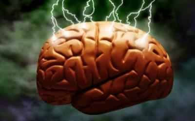 Kunnen we ons brein trainen? – deel twee