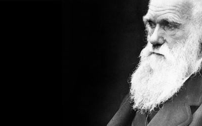 Darwin Day: On the Origin of the Darwin Font