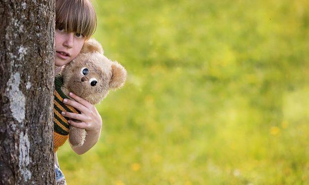 Wat je van beren leren kan: het Teddy Bear Hospital