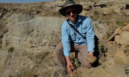 Paleontoloog gespot