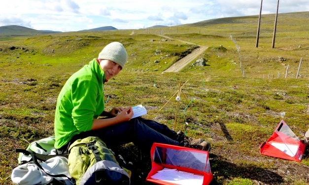 Biologist in focus: reindeer research in the arctic tundra